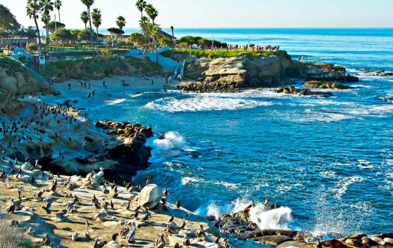 Kona Kai Resort & Spa | USA – San Diego